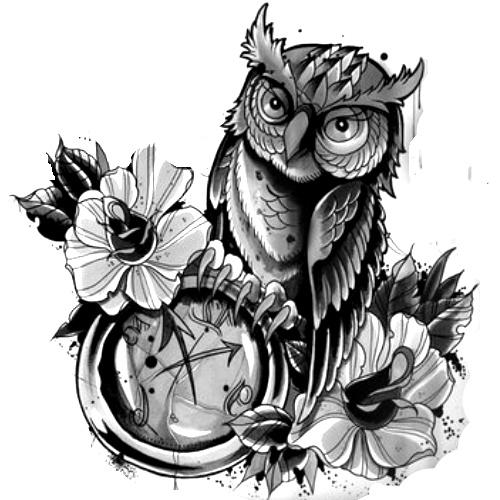 Wzór Tatuażu Sowa Monika Wypożyczalnia Sprzętu